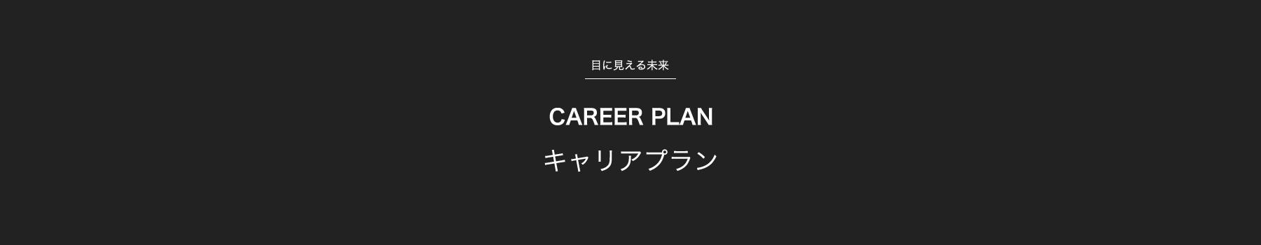 目に見える未来 キャリアプラン